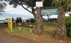 S Turns Park for Surfrider Foundation